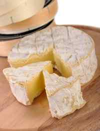 camembert cheese closeup